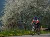 borno-in-bicicletta